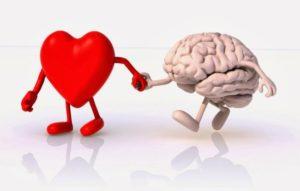 coração e cerebro