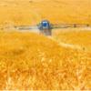 Registros-de-agrotóxicos-Ministério-da-Agricultura